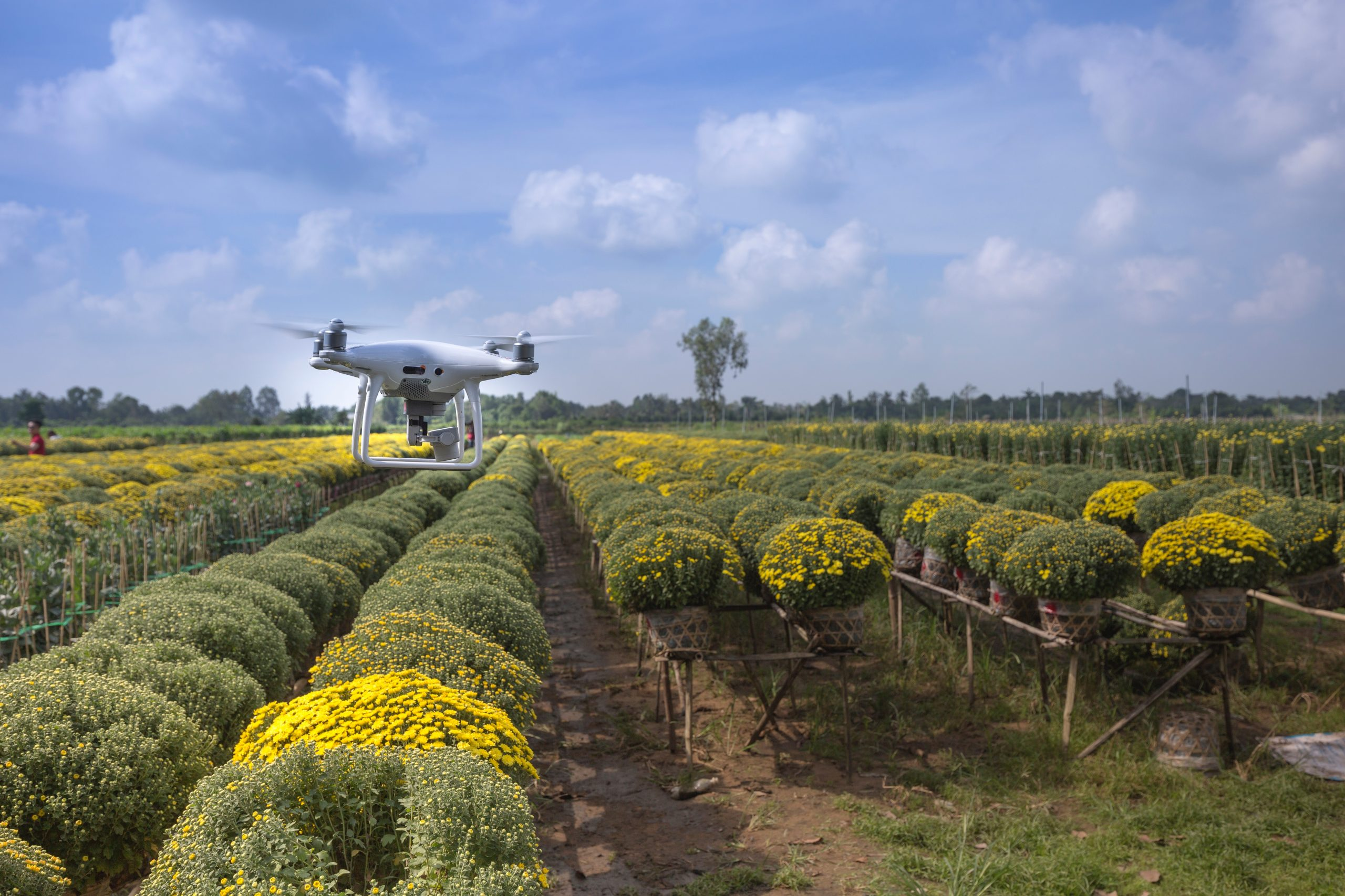 Make your landscaping and farming using innovative technology